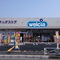 ウエルシア 川越仙波2号店の写真