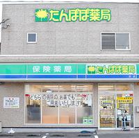 たんぽぽ薬局 泊店の写真