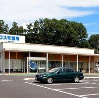 コスモ薬局大平店の写真