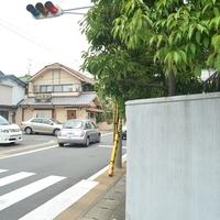 COCOYURU.の写真