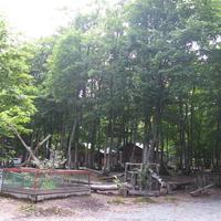 ぽよよんの森オートキャンプ場の写真