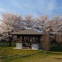 砺波市上和田多目的広場の写真