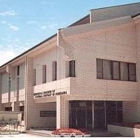 市立市川自然博物館の写真