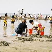 新舞子海水浴場の写真