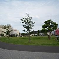 大田区立東糀谷防災公園の写真