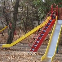 武蔵関公園の写真