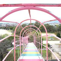 西条市東予運動公園プールの写真