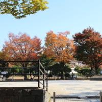 行徳駅前公園の写真