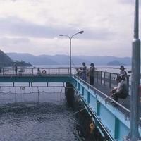 海釣り公園みかたの写真