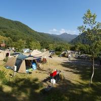 水上宝台樹やすらぎの森キャンプ場の写真