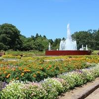 茨城県植物園温室の写真