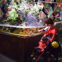 金魚ミュージアムの写真