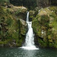 観音滝公園キャンプ場の写真
