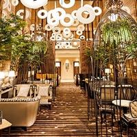 cafe & dining ZelkovA/ストリングス表参道の写真