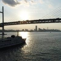 横浜クルーズ ロイヤルウイングの写真