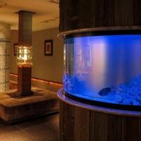 Ryuduki Aquarium dininngの写真