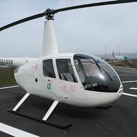 大阪航空株式会社の写真