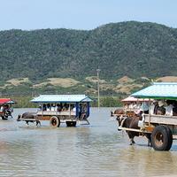 西表島観光センターの写真
