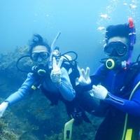 南紀大島ダイブアイランドの写真