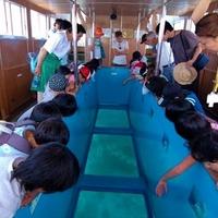 竜串観光汽船の写真
