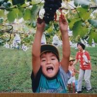 ふじブドウ園の写真