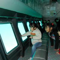 海陽町海洋自然博物館マリンジャムの写真