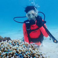 竹内潜水堂の写真