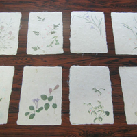 土佐和紙工芸村紙漉体験実習館の写真