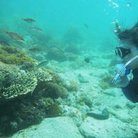牛深ダイビングサービスの写真
