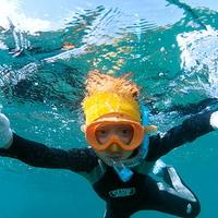 屋久島ダイビングサービス・森と海の写真