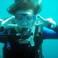 ダイビングスクールオーシャンの写真