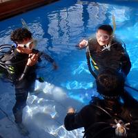 ダイビングスクール WITHの写真