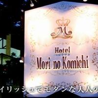 HOTEL Mori no Komichiの写真