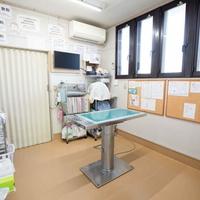 渡辺動物病院の写真
