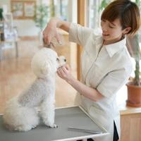 アニファ埼玉動物医療センターの写真