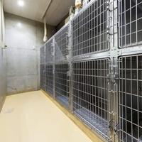 MIRU動物病院の写真