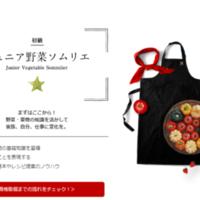 日本野菜ソムリエ教会徳山保健センター会場の写真