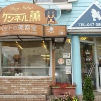 ドッグサロン ケンネル薫 松戸店の写真