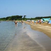大島海水浴場の写真
