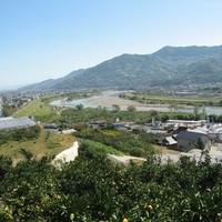かつらぎ町観光農園の写真