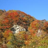 鳥崎渓谷の写真