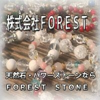FOREST STONEの写真
