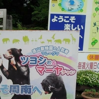 周南市徳山動物園の写真