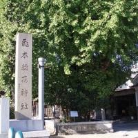 飛木稲荷神社の写真