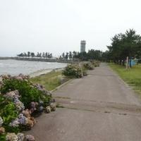 外ヶ浜町観瀾山公園海水浴場 / キャンプ場の写真