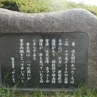大阪市天王寺公園の写真