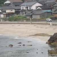 切浜海水浴場の写真