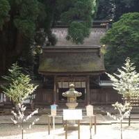 若狭姫神社の写真