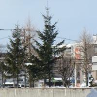 セイコーマート 北円山の写真