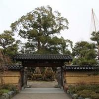 彦三緑地の写真